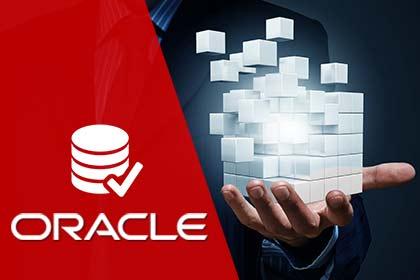 Formação DBA Oracle 11g